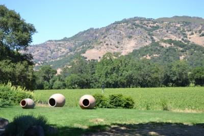Napa Valley 129